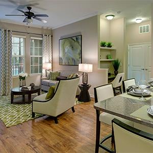 Bell Lake Forest Living Room